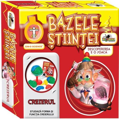 Creierul - Bazele Stiintei